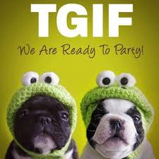 Tgif Quotes New 48 Funny Happy Friday Quotes With Images