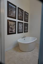 bathroom remodeling in chicago. Bathroom Remodeling - Chicago Suburbs 20 In