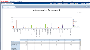 Fusion Applications: Hcm Bi And Ad Hoc Reporting