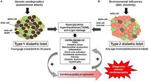 Venn Diagram Type 1 Type 2 Diabetes Frontiers Diabetic Cardiomyopathy Impact Of Biological