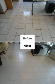 restoration dolphin carpet cleaning restoration