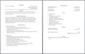 Resume Page Layout Sample Page Resume Layouts Https Wwwresumescom Two Page  Resume