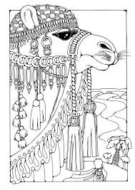 Small Picture 210 best Camels images on Pinterest Camel craft Camels and Animals