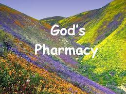 Image result for god's pharmacy chart