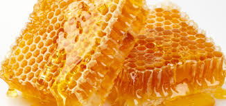 Image result for image honey