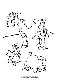 Kleurplaat Koe Varken Kip Dieren