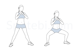 Image result for wide leg squat pulse