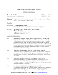 Best Photos Of Vet Objectives For Resumes Veterinary Resume