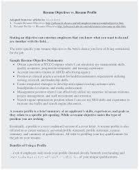 Resume Sample Summary Statement Terrific Personal Profile Resume