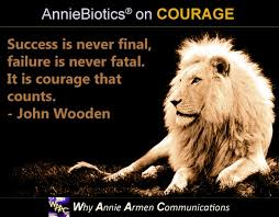 Quotes About Courage Enchanting Why Annie Armen 48 Quotes On COURAGE In Business And In Life