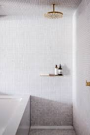 Small Picture Best 20 Mosaic bathroom ideas on Pinterest Bathrooms Family