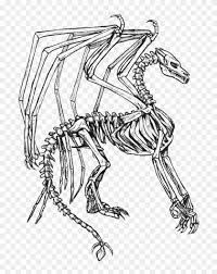 These mysterious beings are mentioned in many nationalities of europe and asia. Skeleton Bone Dragon Coloring Pages Skeleton Dragon Coloring Page Hd Png Download 700x976 4846404 Pngfind