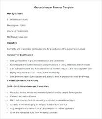Resume Professional Examples Professional Summary Resume ...
