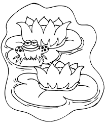 Small Picture 15 best Frogs images on Pinterest Drawings Frog coloring pages