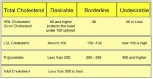 Hdl Ldl Chart Cholesterol Hdl Ldl Ratio Graphic The Ugly Truth About