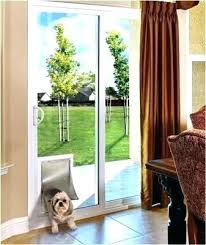 dog doors for glass sliding door with built in sydney dog doors for glass