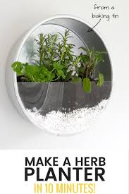 use old baking tins to make an indoor herb planter for your kitchen /  grillo designs
