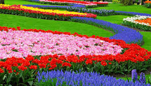 Small Picture flower garden design plans find this pin and more on summer