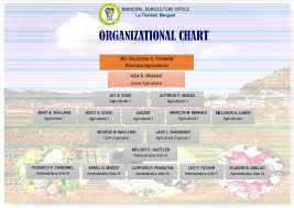 Farm Business Organizational Chart Municipal Agriculture Office Municipality Of La Trinidad