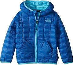 The North Face Kids Baby Boys Thermoball Hoodie Toddler Turkish Sea Turquoise Blue 2t Toddler