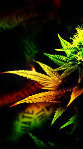 New HD Weed Wallpaper Iphone On Home ...