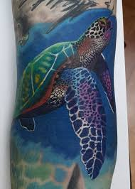 морская черепаха тату на руке у парня добавлено юрий сурков