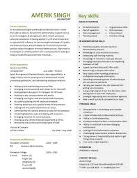 Hr Resume Templates Custom Career Summary An Articulate Highly Presentable Professional With HR