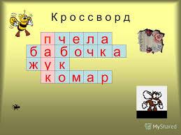 Презентация на тему Курсовая работа Сергиенко И А школа  8 К р о с с в о р д п ч е л а а б б очка жук к о м а р