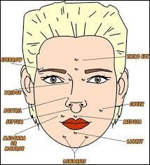 Facial Piercing Chart Facial Piercings Chart Facial Piercings Piercings Dermal
