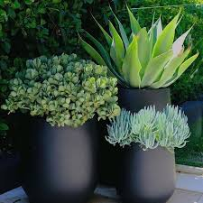 new totally free cute garden pots