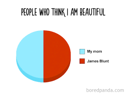 Pie Chart Meme 38 Hilarious Pie Charts That Are Absolutely True Bored Panda