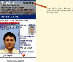 Identification State Or Driver License Number