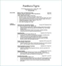 Resume For Financial Analyst New Financial Analyst Resume Unique Finance Resume Keywords
