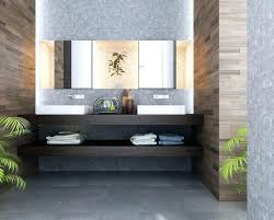 modern bathroom design 2013. Modern Bathroom Design Ideas Small Designs Pictures 2013 A