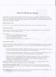 write your essay