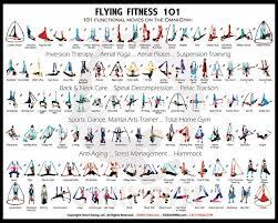 Pin By Alternative Balance On Aerial Yoga Yoga Hammock