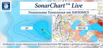 Sonar Chart Live