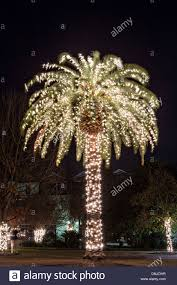 Lighted Christmas Palm Tree Palm Tree Christmas Lights In Stock Photos Palm Tree