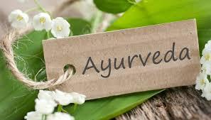 Výsledek obrázku pro ayurveda
