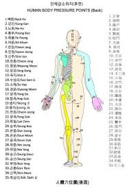 The Human Body Pressure Points Yahoo Search Results