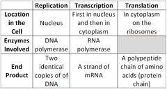 Translation Vs Transcription Venn Diagram 19 Systematic Trna Translation Chart