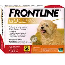 frontline for puppies. Frontline For Puppies