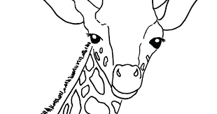 Giraffes Coloring Pages Baby Giraffe Coloring Page Giraffes Kissing
