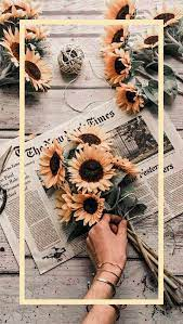 Wallpapers | Aesthetic iphone wallpaper ...