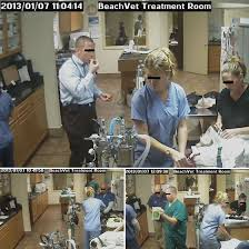 Busy Animal Hospital TRENDnet IP Cam Security Vulnerability