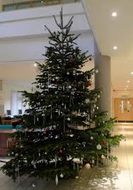 Image result for christmas tree festival warwick nchoir