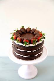 Easy Dog Birthday Cake Recipe Uk Best Homemade Recipes Chocolate