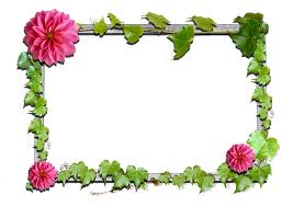 Image result for picture frames