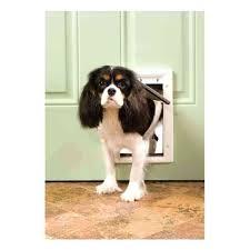 installing a dog door doors can be good idea in wall install glass sydney through brick installing a dog door