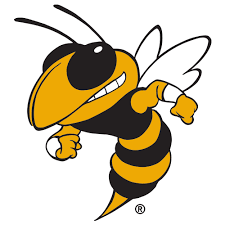 logo_-Georgia-Tech-Yellow-Jackets-Buzz - Fanapeel